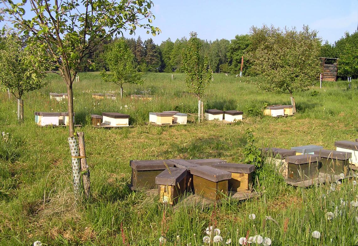 Včelí farma Nosek